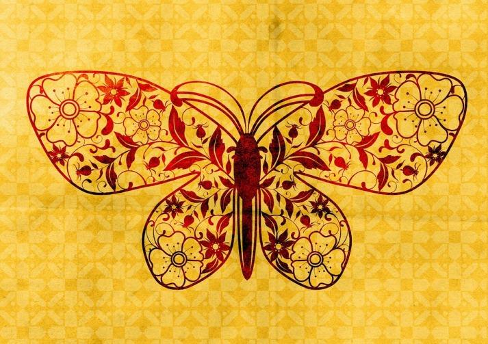 butterfly-1131841_960_720